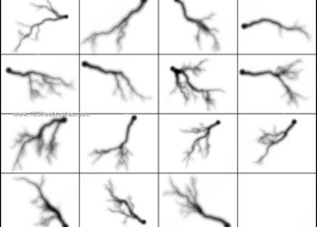 Free Lightning Brush Set