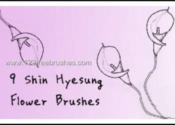 Flower Ornaments Brushes