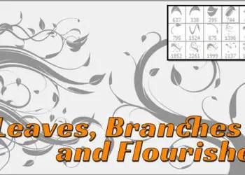 Flourish – Leaves and Vines