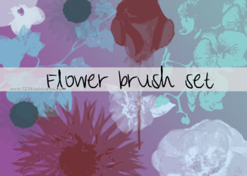 Flower Brushes Review