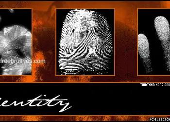 Identity Fingerprint