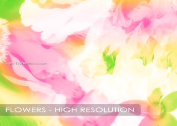 Flower Design Brushes For Photoshop