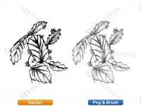 5002009-sketchy-plants-vector-and-photoshop-brush-pack-02_p001