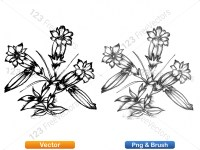 5003049-hand-drawn-sketch-flowers-vector-and-photoshop-brush-pack-02_p001