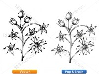 5003050-hand-drawn-sketch-flowers-vector-and-photoshop-brush-pack-03_p001