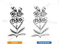 5003050-hand-drawn-sketch-flowers-vector-and-photoshop-brush-pack-03_p010