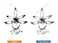 5003050-hand-drawn-sketch-flowers-vector-and-photoshop-brush-pack-03_p013