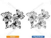 5003052-hand-drawn-sketch-flowers-vector-and-photoshop-brush-pack-05_p011