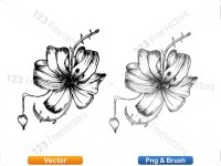5003053-hand-drawn-sketch-flowers-vector-and-photoshop-brush-pack-06_p010
