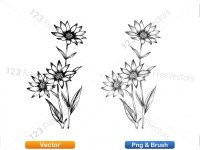 5003056-hand-drawn-sketch-flowers-vector-and-photoshop-brush-pack-09_p001