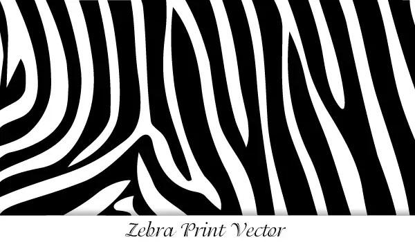 zebra print vector 123freevectors rh 123freevectors com Zebra Print Border zebra print seamless vector