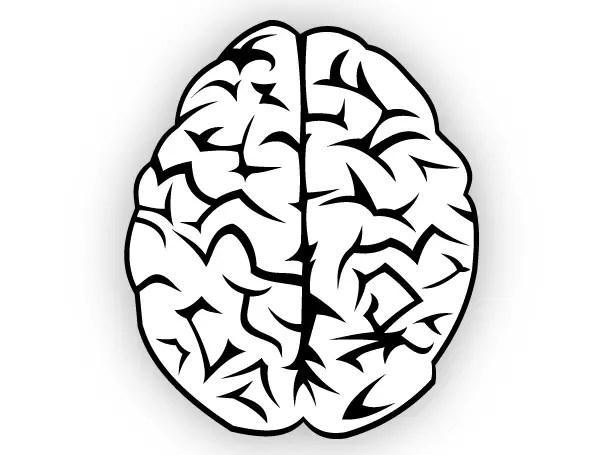 brain vector free 123freevectors rh 123freevectors com free brain vector art brain vector art free download