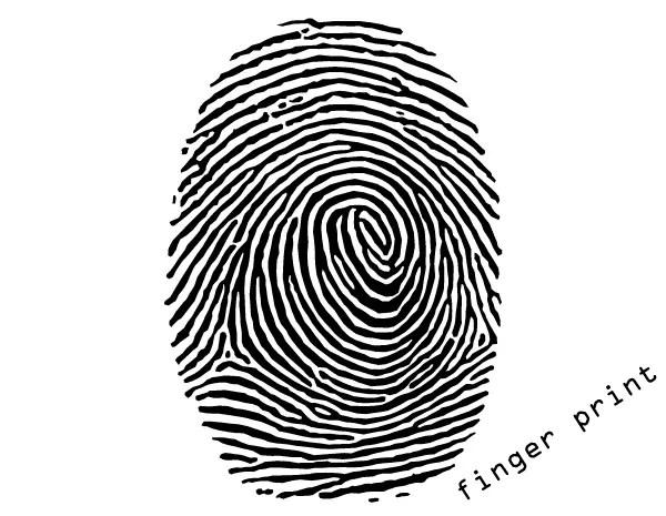 Tribal Heart With Banner Fingerprint Vector Ill...
