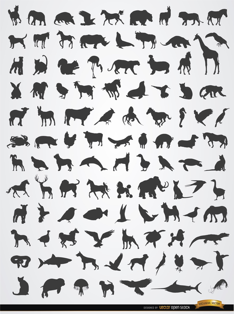 Terrestrial, Aerial, and Aquatic Animal Silhouettes Free Vector