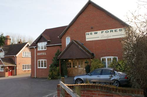 New Forest Lodge Promotion