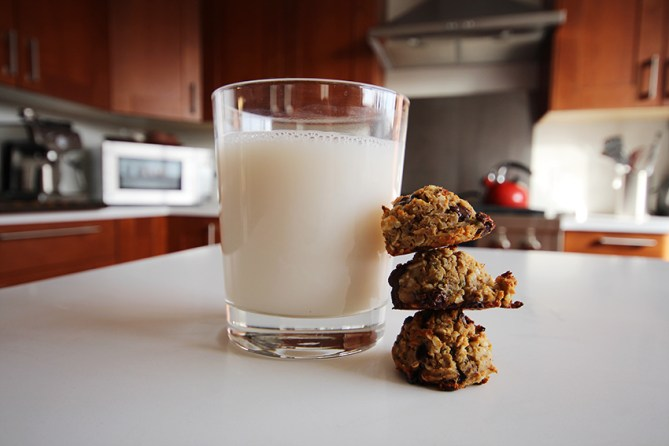 chocolate-chip-protein-cookies-4