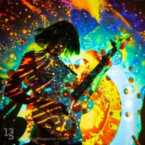 Cat-Scan-Constellation-2017-3