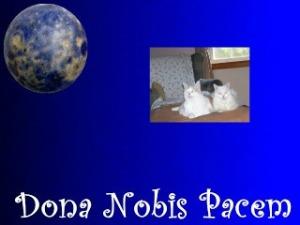 DonaNobisPacemBlogBlastForPeaceTemplate252330withMarbleMimiLenoxUpperLeft
