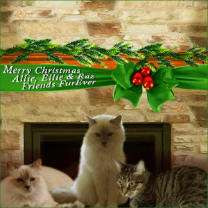 Friends Furever 2015 Holiday Ecard
