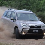 forester67