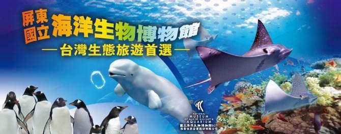 夜宿海生館 - 台灣水域館B Sleepover in Waters of Taiwan (B)