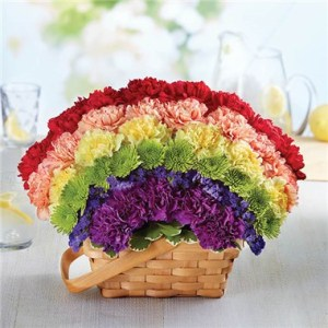 1 800 FLOWERS     OVER THE RAINBOW BASKET   1 800 Flowers 4 Gift Seattle 1 800 Flowers     Over The Rainbow Basket