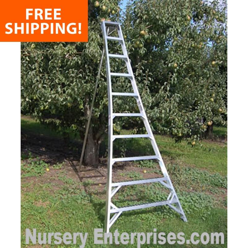 Tallman tripod orchard ladders - FREE SHIPPING & Bulk Discounts