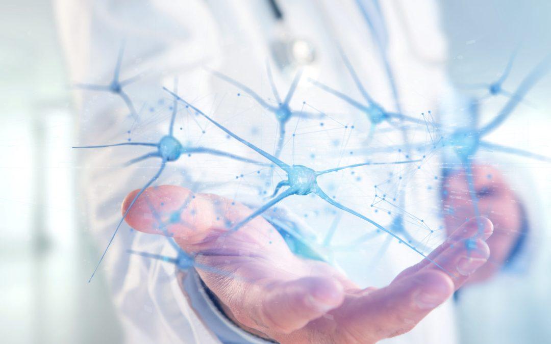 CBd Neorons Brain Function