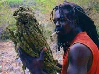 Marijuana is addictive
