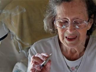 Marijuana grandmother