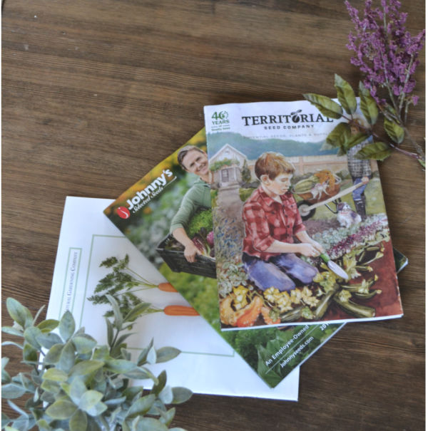 A dark brown background with 3 seed catalogs fanned out with a couple of faux flowers in the corners next to the catalogs