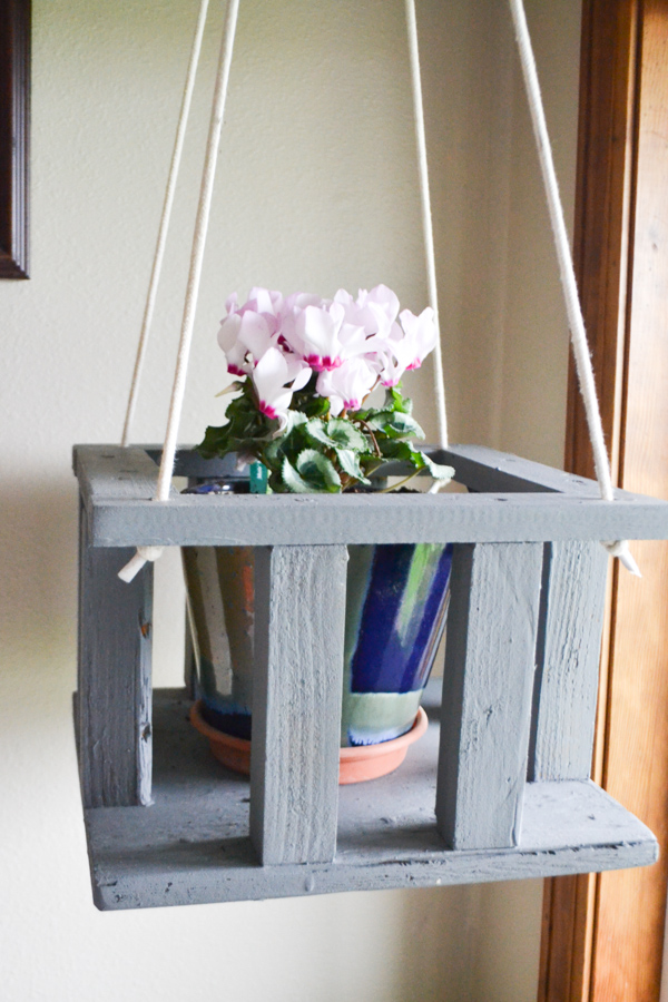 A close up of a hanging plant stand that has a pink plant inside