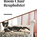 A black and white cat laying on a padded dining room chair with blue and white fabric and the chair is painted white