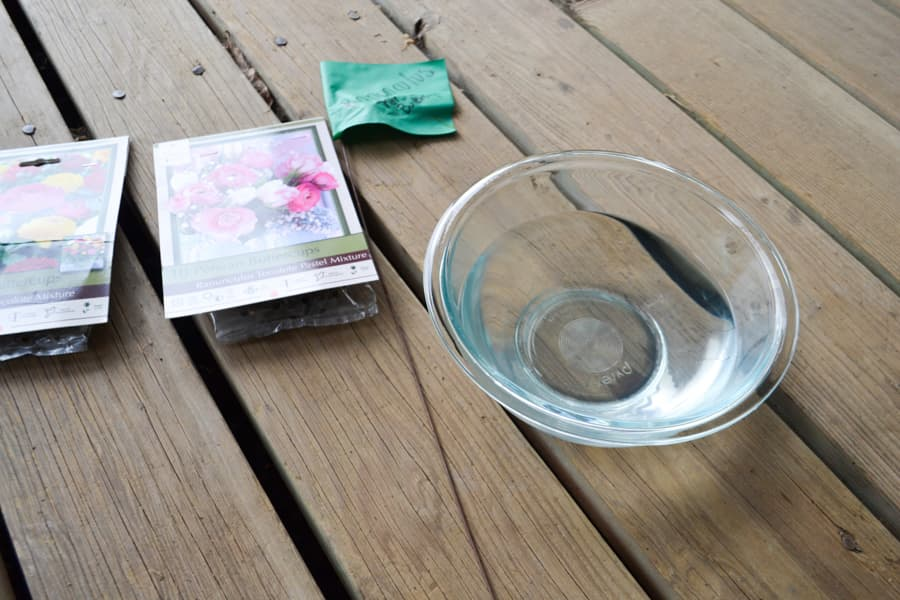 A glass bowl filled with water sitting on a wood deck with two packages of ranunculus on the right and a green garden flag in the middle