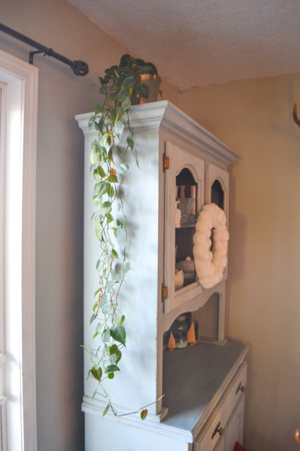 A long trailing pathos houseplant sitting on top of a blue cabinet with a white pom wreath on the front of the hutch