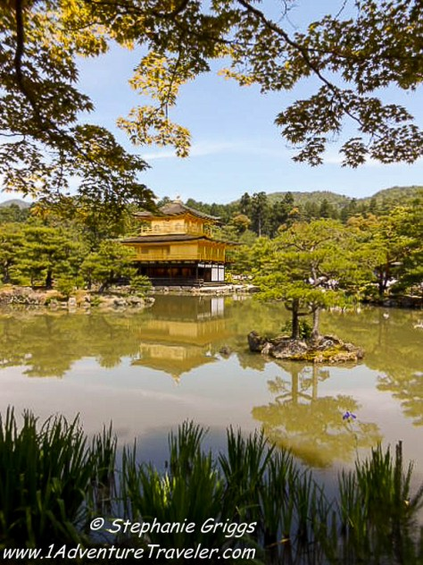 Kyoto Japan an Expat Travel Adventure to this Ancient City- 1AdventureTraveler