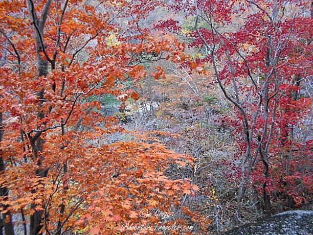 2300d5b49093c Mt Jirisan - See Magnificent Fall Colors with 1AdventureTraveler | South  Korea | Mt. Jirisan