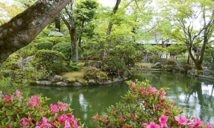 March Festivals Japan 2016