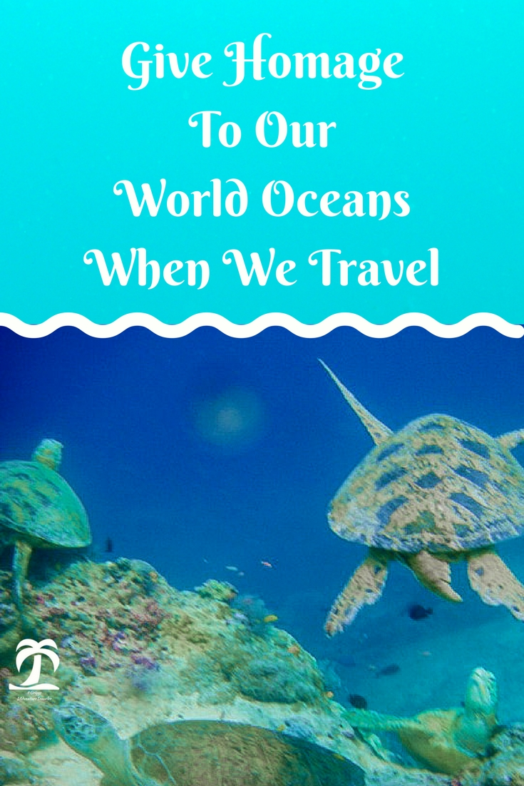 Give Homage to Our World Oceans When We Travel - 1AdventuerTraveler | The Ocean is wide and interconnected. Let us learn how we can save our oceans when we travel.