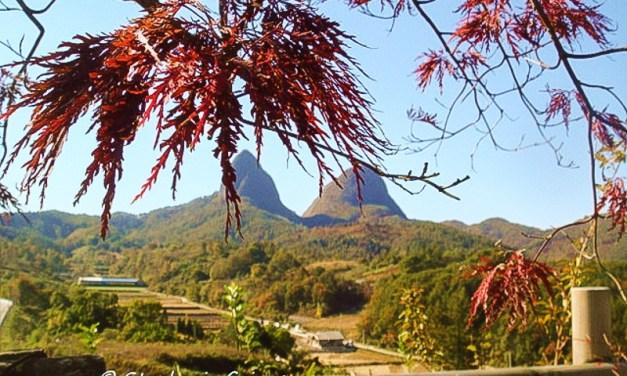 The Impact of Fall at Mt Maisan