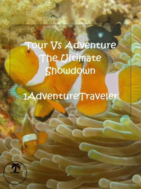 Tour Vs Adventure The Ultimate Showdown with 1AdventureTraveler