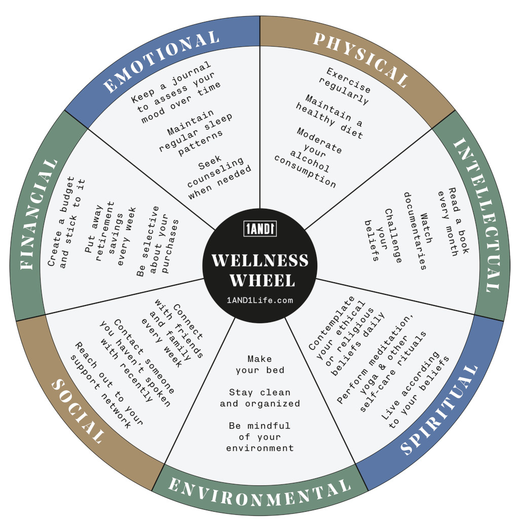Why Is The Wellness Wheel Important