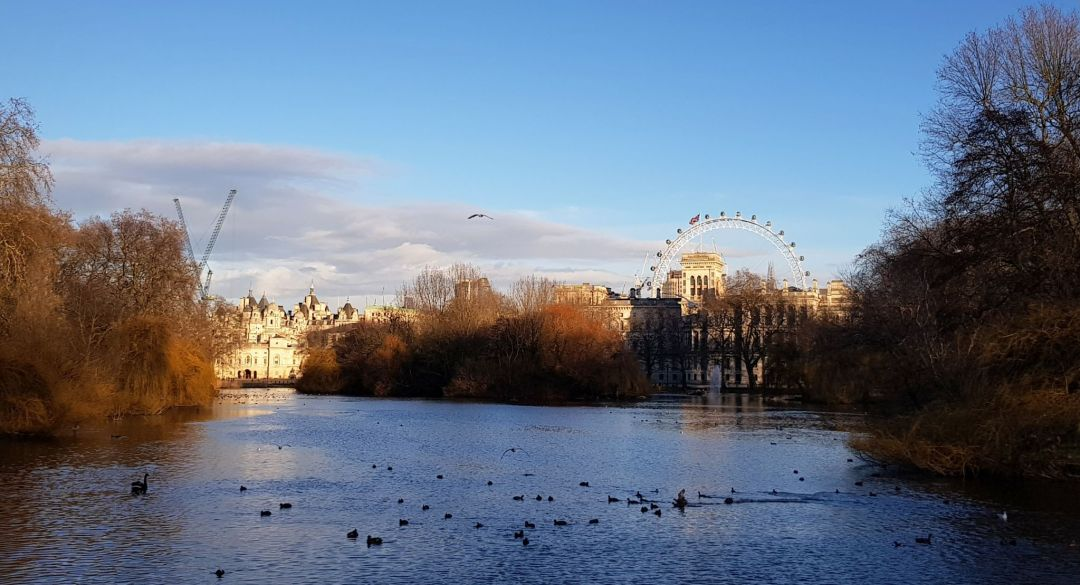 St James's Park - Whitehall is illuminated by the setting sun