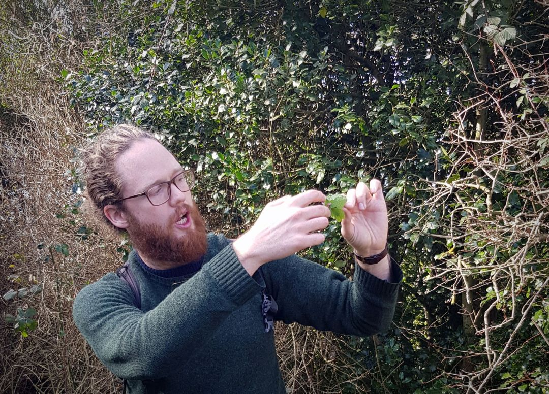 Foraging in London where a guided tour can help you learn all about the edible leaves to be found in the city