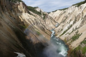 Lower Falls Yellowstone NP