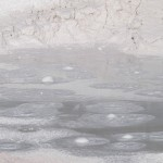 Fountain Paint Pot Yellowstone NP