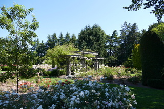 Rosegarden Seattle