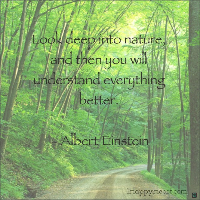 Albert Einstein Look Deep Into Nature 1 Happy Heart