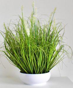 poľná tráva 48cm