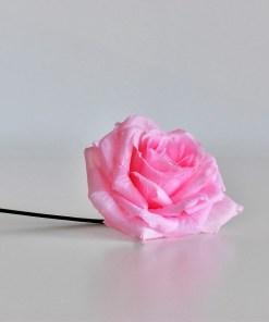 Ruža bledoružová